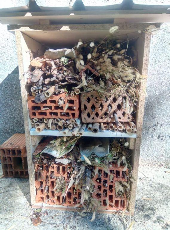 Studenti druge godine Poljoprivrede krša - Biljna proizvodnja izradili prvu nastambu za kukce